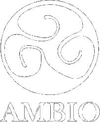 Initiativa Mexico Awards logo